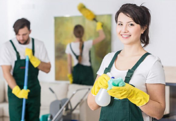 Cleaning - Cleaner