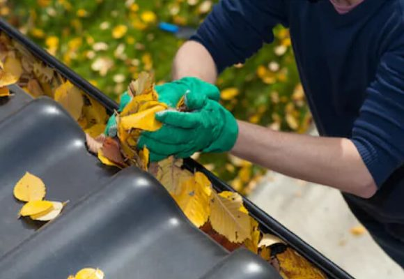 Gutter - Cleaning